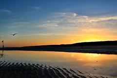 Zonsopkomst strand Westkapelle (Omroep Zeeland) Tags: zonsopkomst strand westkapelle lovezeeland omroepzeeland