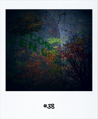 "#DailyPolaroid of 5-11-12 #38 • <a style=""font-size:0.8em;"" href=""http://www.flickr.com/photos/47939785@N05/8165047484/"" target=""_blank"">View on Flickr</a>"