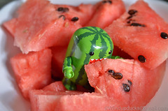 Camouflage Action (WindUpDucks) Tags: watermelon domo qee toy2r series3