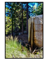 Spring! Water (MariposaCruz (Coming Back As Time Allows!)) Tags: california light green nature water grass rain contrast forest nationalpark rust tank natural pipe cement highlights pole idyllwild watertank residue rainwater southridgetrail sanbernadinonationalforest