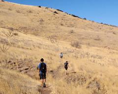 032 Crossing The Grasslands (saschmitz_earthlink_net) Tags: california grass trail orienteering runner 2012 aguadulce vasquezrocks losangelescounty laoc losangelesorienteeringclub