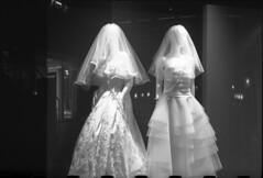 wedding dresses (yackymouse) Tags: push process