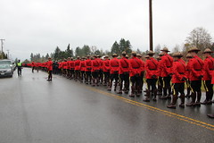 Nov 20.12 - RCMP Regimental Funeral for Surrey Cst. Adrian Oliver (bcfiretrucks) Tags: red death uniform oliver dress duty watch royal police canadian surrey line funeral mounted end adrian rcmp officer serge cst constable policing eow regimental lodd