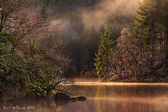 Misty Tranquility (2) (Shuggie!!) Tags: autumn trees water forest landscape scotland trossachs hdr lochard mistandfog