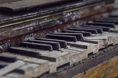 The final chord (Subversive Photography) Tags: wood closeup keys 50mm dof bokeh urbandecay piano urbanexploration beyond manor subversive derelict redemption urbex ebonyandivory danielbarter