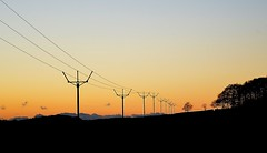 LINES OF ENERGY (simongavin83) Tags: sunset sun lines electric energy power electricity powerline poles kilmarnock conductors energynetworks nikond5100 overheadpylon