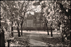 Through the Trees (tatraskoda) Tags: old uk england urban bw history film monochrome 35mm geotagged mono town blackwhite kodak lincolnshire analogue praktica publiclibrary gainsborough bw400cn mtl5b cobdenstreet commiecamera dn21