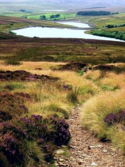 Pennine--way (raymondo12 loves colour) Tags: city autumn water rural landscape magic 1001nights bronte widdop thegalaxy overthemoors rememberthatmomentlevel4 rememberthatmomentlevel1 rememberthatmomentlevel2 rememberthatmomentlevel3 rememberthatmomentlevel7 rememberthatmomentlevel9 rememberthatmomentlevel5 rememberthatmomentlevel6 rememberthatmomentlevel8 rememberthatmomentlevel10