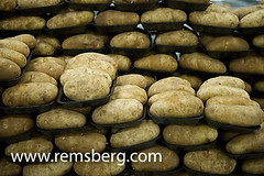 Potatoes on a potato farm (Remsberg Photos) Tags: food plant office potatoes factory farm vegetable potato ag processing agriculture rootvegetable agribusiness officethings cropinsurance agriculturethings