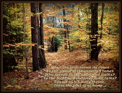 Woodnotes by Ralph Waldo Emerson (edenseekr) Tags: forest woodlands poem leafy beechtrees ralphwaldoemerson digitallypainted woodndotes