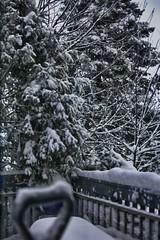 HDR Snow 1