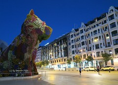 Puppy-.Museo Guggenheim Bilbao. (lameato feliz) Tags: puppy bilbao museoguggenheim arte escultura jeffkoons
