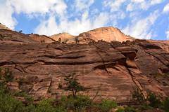 GEM_2939 (Gregg Montesi) Tags: zion national park angels landing