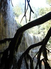 Cada constante de agua. (margabel2010) Tags: cascadas cascada solysombra ramas presas presa airelibre contraluz contraluces blanco blancoyazul blancoynegro agua aguadulce sierra guadarrama