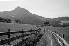 It's a long way to Umes (Gian Floridia) Tags: fiallosciliar sciliar umes valgardena bn bw bienne long lungo meadows pathway prati sentiero serpeggiante steccato winding