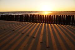 Sundown shadows (Dannis van der Heiden) Tags: vlissingen walcheren zeeland netherlands beachpoles beach shadow sundown goldensun sun summertime summer sigma18300mm slta58 water