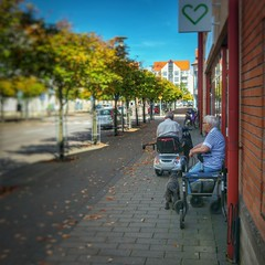 INSTAGRAM 365 Day 238: Small town waiting game (tomas_nilsson) Tags: instagram365 sweden staffanstorp sunnyday waiting pharmacy store trees smalltown blue bluesky dog seniors cellphonephotography lg g4 snapseed postprocessing