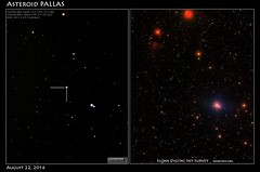 Asteroid PALLAS Observation on August 22, 2016 (Tom Wildoner) Tags: tomwildoner leisurelyscientistcom leisurelyscientist pallas asteroid solarsystem astronomy astrophotography space science meade telescope canon canon6d teamcanon celestron stacking timelapse asteroidbelt impact earth sdss survey