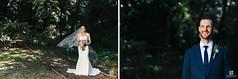 Cathala Bride & Groom 2015 (allison.heyman) Tags: protea bridalbouquet boutoneirre nigella floral floristry design floraldesign