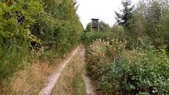 Wandern im Hunsrück: Bei Spabrücken