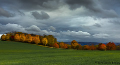 Fall Equinox!! (Doreen Bequary) Tags: fall landscape clouds equinox newengland autumn grass grassland sky field trees maples massachusetts leaves yellow stormy