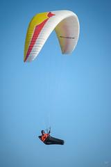 DSC_7429 (Magnus Trnvall) Tags: paragliding nikon300mmf4pfedvr d600