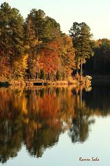 Wind's Palette (Explored) (Ramen Saha) Tags: colors autumncolors ramensaha
