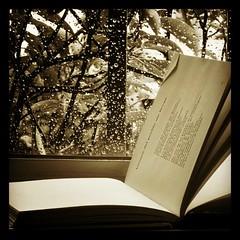 Lees en un libro sin acabar buscando encontrar el por qué, lo intentas con un puzle de piezas dispares, esperas mirando la hora en un reloj sin cuerda, sientes con el corazón de un ahorcado... y mientras, la vida, no da más oportunidad que la de un cupón