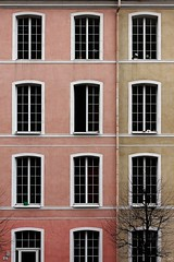 A Life as a Facade... (_neb) Tags: pink windows building tree green window colors lines architecture facade canon austria feldkirch patterns details olive front symmetry line neb symmetric gutter differences canonef1740mmf4lusm dps housefront vorarlberg leadinglines repetitive fadedcolors fadingcolors digitalphotographyschool hiddendetails dpsassignment canoneos550d