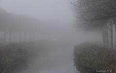 mist_19112012_2 (raymondklaassen) Tags: mist nevel flevoland grijs almerebuiten vochtig wp19112012