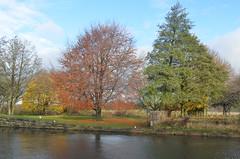 Autumn at Woodlesford Lock (Steve Barowik) Tags: autumn trees leaves nikon colours lock leeds woodlesford d7000 nohs2 barowik stevebarowik sbofls26