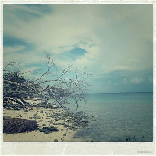 Kering dan sepi... #Pantai #Laut #Muna #Instanusantara #Instagood #SouthEastSulawesi #Beach #Sea #Wisata #Indonesia #Samsunggalaxys3