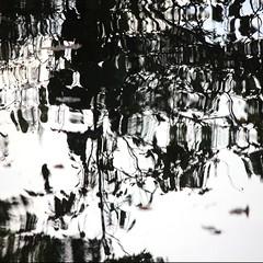 Abstract (tanakawho) Tags: bw lake distortion abstract reflection tree water monochrome monotone squareformat tanakawho