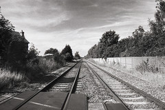 Railway (Saturated Imagery) Tags: urban blackandwhite iso100 leeds tracks railway yellowfilter selfdeveloped methley luckyshd100 vivitar28mmf25 prakticatl5b rolleid74
