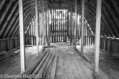 20121123_DABH6419.jpg (DawnitaHall) Tags: wood november autumn building fall lines architecture barn nikon farm shed monochromatic framework nationalparkservice preserve beams 2012 supports d90 jeffersonforest glenalton