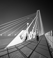 Cooper River Bridge (Chimay Bleue) Tags: bridge shadow bw white black closeup architecture modern river mono design noir pattern suspension south monochromatic architectural charleston cables cooper carolina railing jogging pon jogger ravenel cablestayed blan
