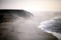 Dune and ocean (Délirante bestiole [la poésie des goupils]) Tags: ocean africa coast seaside northafrica dune tracks morocco maroc afrique westernsahara saharaoccidental