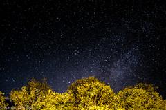 La noche en mi cabaña (Aaron Cameras) Tags: longexposure night stars nikon chiapas ecoturismo thegalleryoffinephotography d5100