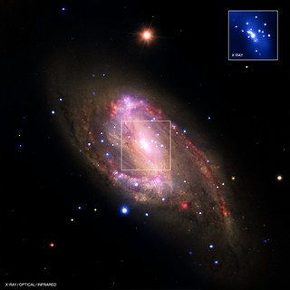 Spiral Galaxy NGC 3627 (NASA, Chandra, 12/13/12)