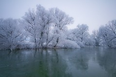 Unica river (Uros P.hotography) Tags: trip travel trees winter lake snow cold tree tourism ice nature beautiful fog photoshop wonderful river frozen nice fantastic nikon perfect frost tour superb wildlife awesome famous freezing sigma tourist glorious slovenia journey stunning excellent slovenija lovely striking incredible karst 1020 unforgettable brilliant breathtaking extraordinary aweinspiring unica remarkable monumental carso stupendous turism memorable d300 exceptional turist jezero kras intermittent planina cerknica acclaimed brathtaking slod300