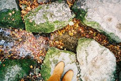 autumn in Kyoto (motty) Tags: autumn film water leaves japan 35mm temple moss kyoto natura 1600 ohara sanzenin classica natura1600 naturaclassica