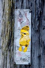 Sunday 21st August (janie.d (urban burbler)) Tags: streetphotography streetarturbanartgraffitirgor innerwest dirty wall graffporn paint bomb paste art artists newtown