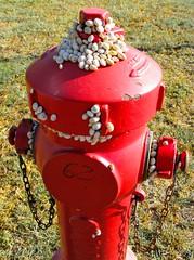 Tourist attraction for snails (alex.gb) Tags: snail hydrant touristattractionforsnails