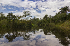 Iquitos (Mark Watson Photography) Tags: mark watson photography by flickr iquitos peru jungle san pedro village travel reflection