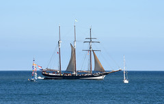 Oosterschelde leaving Blyth 29th August 2016 (DavidWF2009) Tags: northumberland blyth sea ships tallship sailingship calm yachts oosterschelde