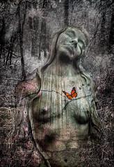 Sculpture - Broken Heart v3 (Impromptu Productions) Tags: jackcashin sculpturegarden sculptures