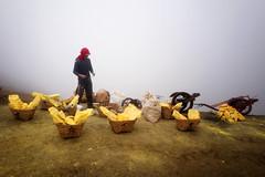 java - ijen (peo pea) Tags: hard work reportage leica leicaq sulfur zolfo mine miners yellow crater cratere vulcano volcano indonesia ijen giava java hell paradise