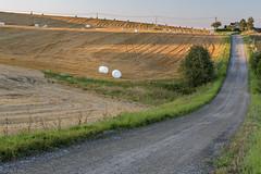White balls (kaifr) Tags: strawballs farm road sunset field farmland akershus norway no