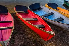Boat Bunk Up (Derek Robison) Tags: frome dorset rowingboat wareham