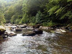Watersmeet (Paul F 36) Tags: devon watersmeet